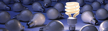 Insights/Publications