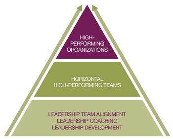 High Performance Team Triangle